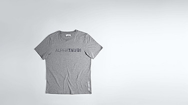 JIGU V1.Y1.02 Logo T-Shirt grey / melange Hinten Alpha Tauri