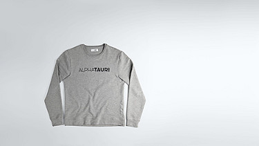 SALT V1.Y1.02 Cotton-Bamboo Mix Sweater grey / melange Back Alpha Tauri