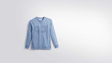 SEGA V1.Y2.01 Taurex® Logo Sweatshirt light blue Hinten Alpha Tauri