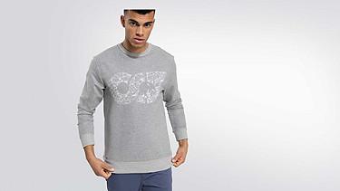 SEGA V1.Y2.01 Taurex® Logo Sweatshirt grey / melange Model shot Alpha Tauri
