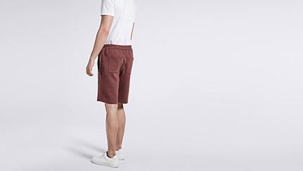 PUGH V1.Y1.01 Jersey-Shorts bordeaux Vorne Alpha Tauri