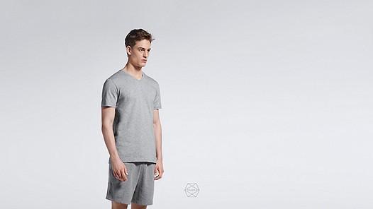 BUCK Taurex® T-Shirt mit V-Ausschnitt grey / melange Model Foto Alpha Tauri
