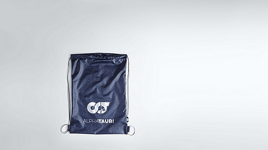 ALOG V1.Y1.02 Gymbag mit Logo navy Hinten Alpha Tauri