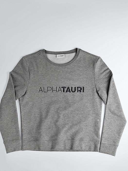 SADI V1.Y1.02 Logo Sweatshirt grey / melange Hinten Alpha Tauri
