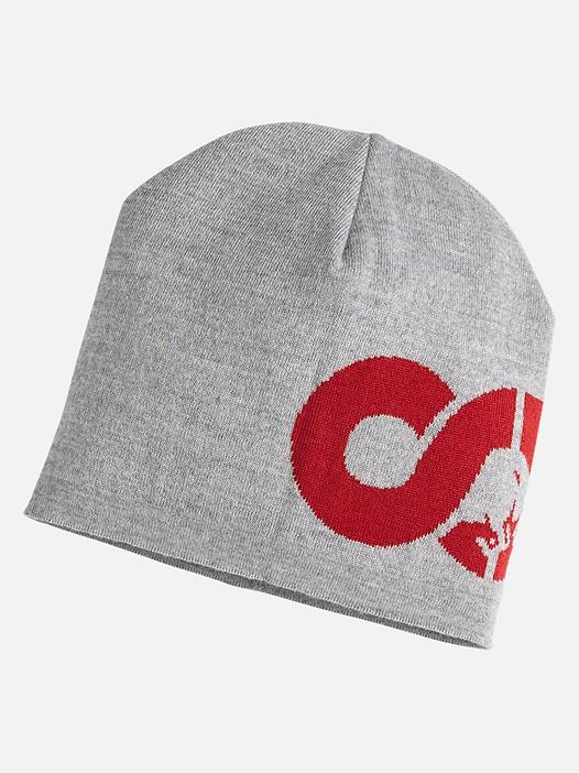 ALEG V1.Y2.02 Knitted Beanie with Logo grey / melange Back Alpha Tauri