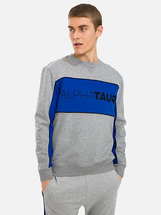 SHAAK V1.Y3.01 Colour-Block Sweatshirt with Taurex® Technology grey / melange Model shot Alpha Tauri