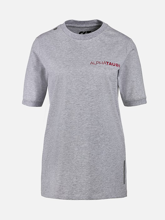 JIEVA V3.Y3.02 Crew Neck T-Shirt with Taurex® grey / melange Back Alpha Tauri